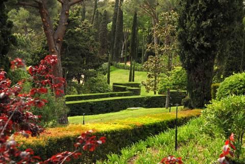 Jardines de Santa Clotilde - 9d780-DSC_0081.jpg